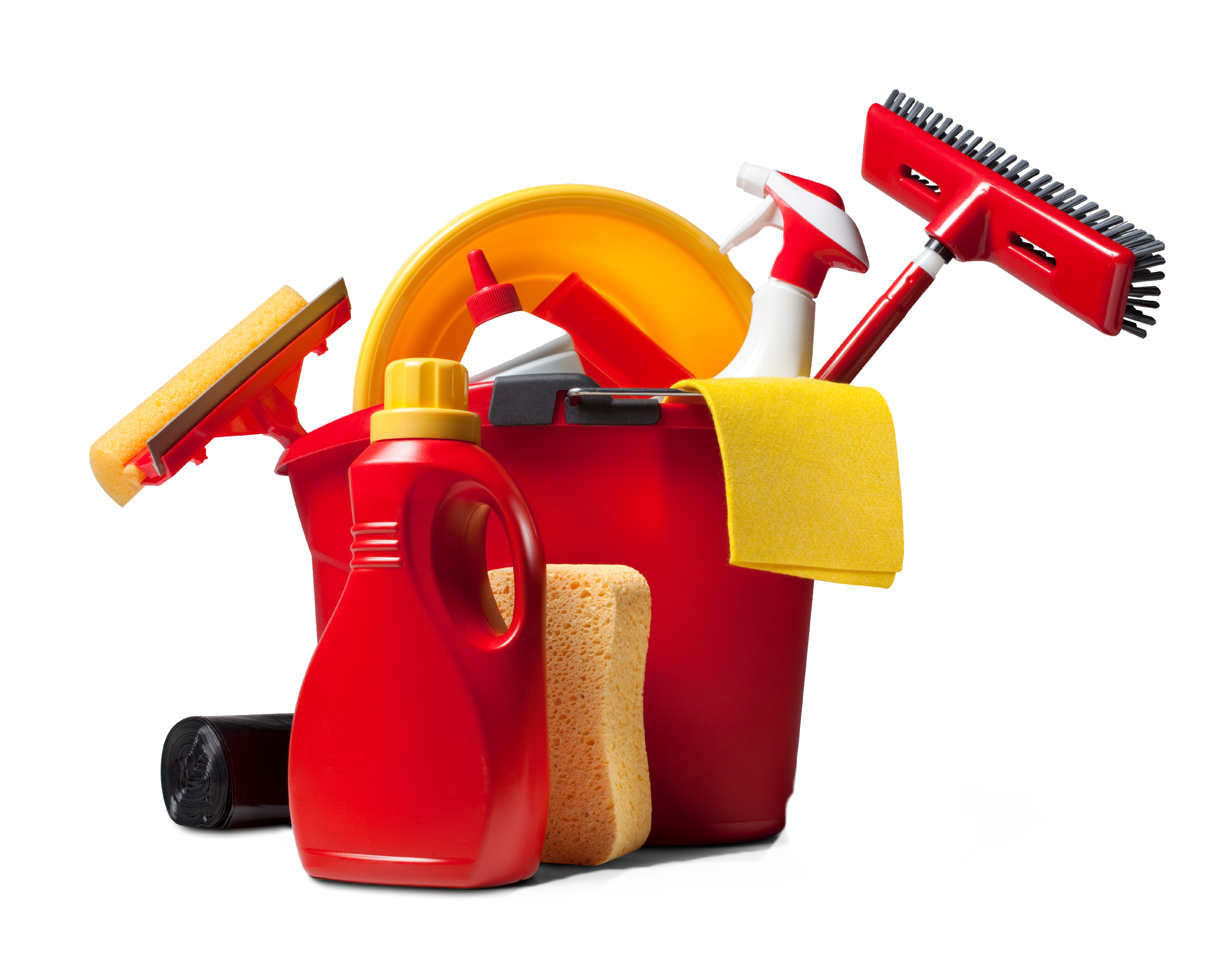 Cleaning Services for Renters